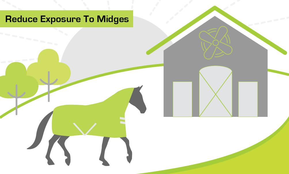 Reduce Exposure to Midges