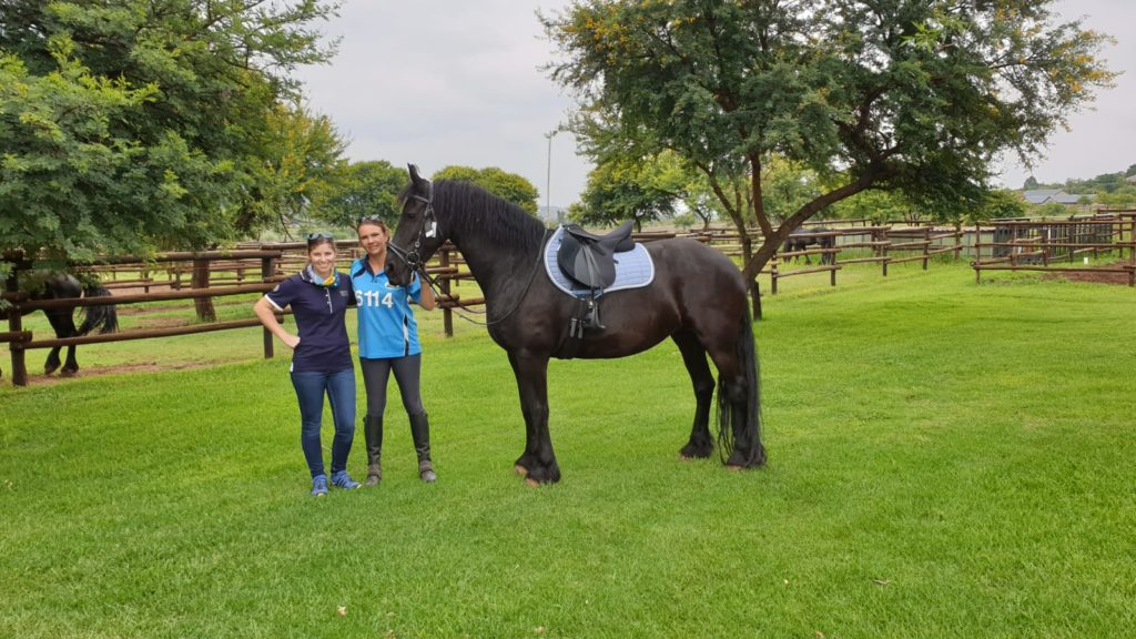 Lize and client with a Friesian in his new Wintec saddle